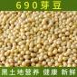 供应东北黑龙江产690芽豆小粒芽豆超市专用 豆浆专用批发